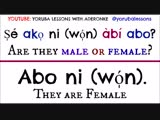 Aderonke. How to Say Male and Female in Yorùbá Language