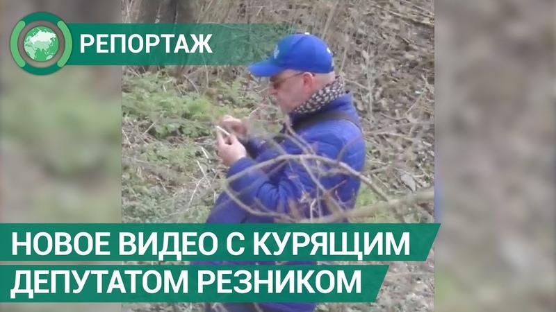 Опубликовано новое видео с курящим депутатом Резником. ФАН-ТВ.