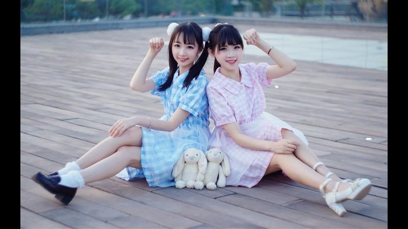 【椭奇x清浅】★Viva Happy★ 兔兔那么可爱你为什么要扔兔兔![4K!]