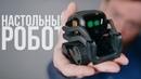 Самый классный настольный робот. 🤖/ Обзор Vector от Anki. тольятти/тлт/игры/блондинка/красивая/прикол/секс/порно/смешно/угар