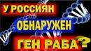 Что общего Россиянин и РАБ?