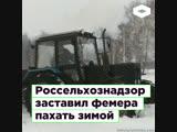 Россельхознадзор заставил фермера пахать снег ROMB