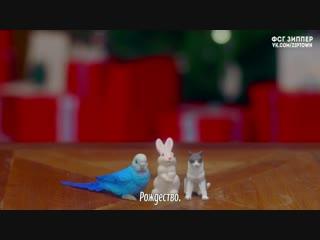 LOONA (HeeJin, HyunJin, HaSeul) - The Carol [рус.саб]