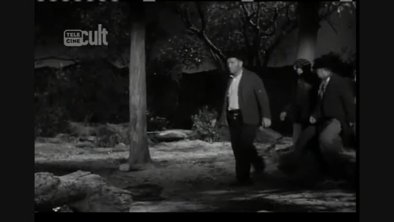 De Pernas pro Ar (1955) TVRip Legendado