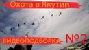 Охота в Якутии. Подборка видео 2 МАЙ.