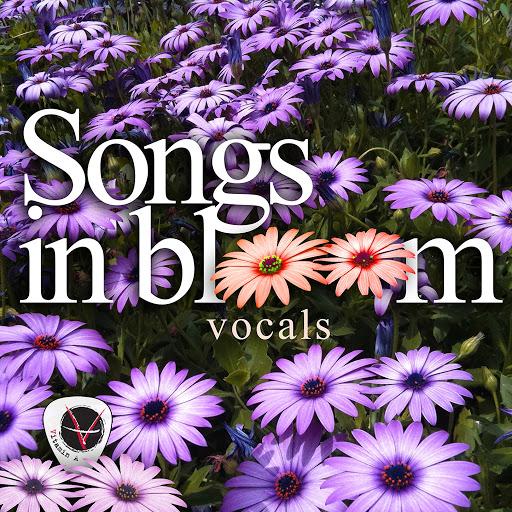 ViTAMiN альбом Songs In Bloom