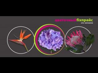 Цветочный фикс-прайс
