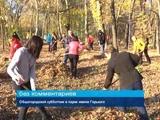 Общегородской субботник в парке имени Горького. 19 октября 2018