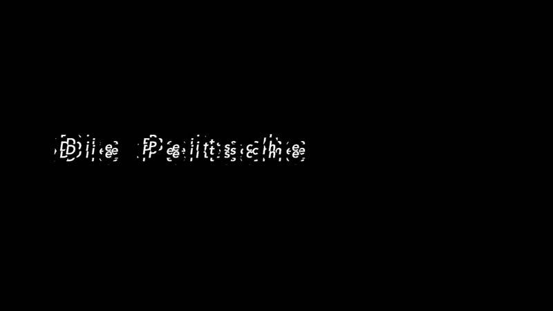 «Die Peitsche»