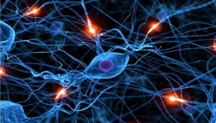Фотошоп от нейросети