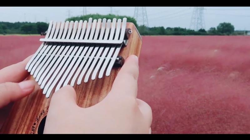 Kalimba Thumb piano cover—Grandmaster of Demonic Cultivation Animation Theme Song 醉梦前尘—MoDaoZuShi