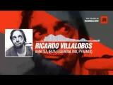 Ricardo Villalobos - Amnesia, ibiza (Essential Mix, Pyramid) #Periscope #techno #music