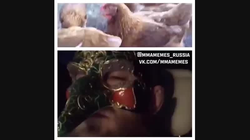 КОНОР МАКГРЕГОР НА ХЭЛЛОУИН КУРИЦА MMAMEMES