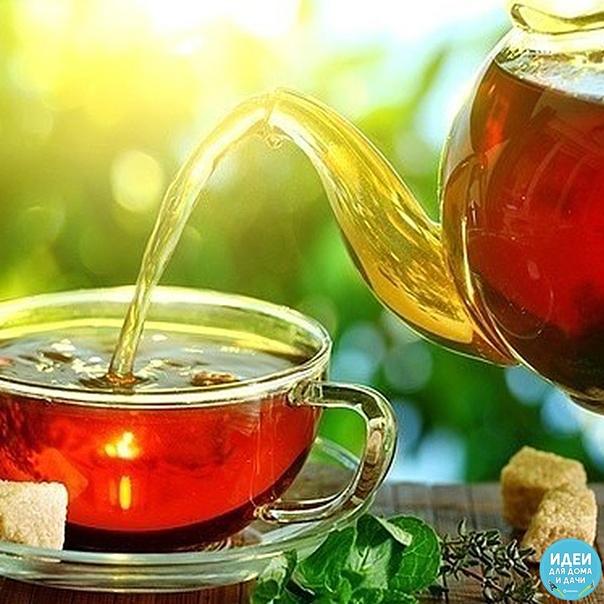 Что добавить в чай, чтобы получить максимум пользы.