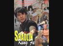 Шаолиньское реальное мастерство Shaolin Kung Fu 1994 Визгунов VHSRip