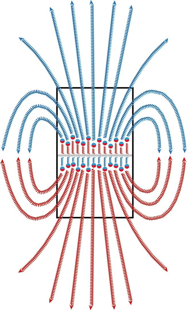 Магнитные волны (уст.: магнитные линии, магнитные поля)