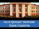 Боровичский педагогической колледж глазами студентов