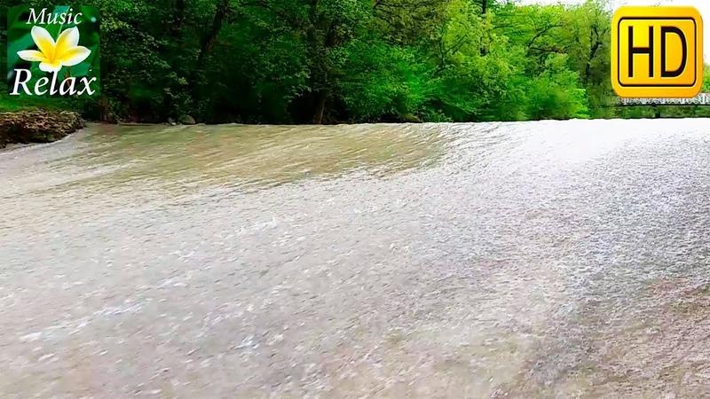Расслабляющий Звук водопада на Лесном Ручье | 10 часов Сна и Релакса