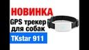 Ошейник GPS - трекер TK STAR 911 навигатор для собак кошек животных