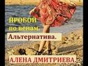 Пробой по венам. Альтернатива. Алена Дмитриева.