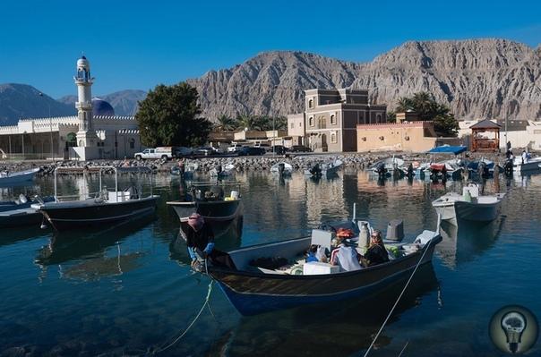 Рыбаки Омана. Ч.-1 До открытия нефти в 1960-х годах 90% населения Омана жило сельским хозяйством и рыболовством. Сейчас рыба остается вторым по величине природным богатством этой ближневосточной