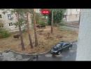 Битва лосей и помятая машина