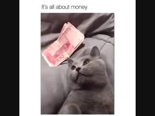 Деньги всё решают!