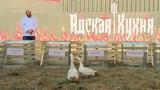 Адская кухня 2 сезон. Выпуск 6 (эфир 26.09.2018)