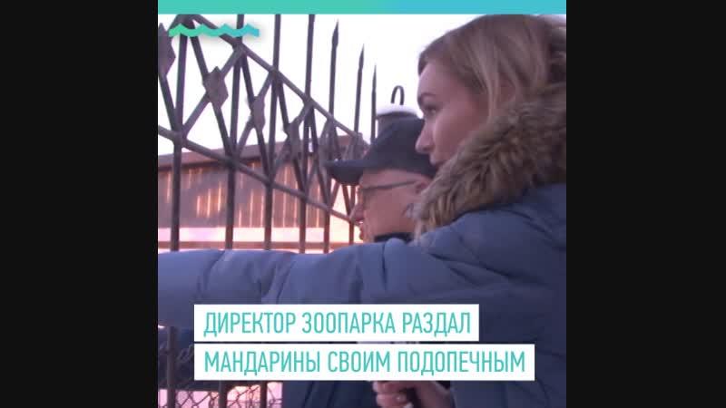 Мандариновое настроение в Барнаульском зоопарке