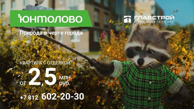 ЖК Юнтолово Енот Степан и селфи Природа в черте города Квартира с отделкой от 2 5 млн рублей