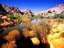 Desert Sessions Holey Dime Alain Johannes