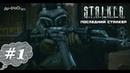 S.T.A.L.K.E.R. Последний сталкер 1. Разведка Кордона.