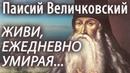 Без этих 10 (Десяти) добродетелей невозможно спастись. Паисий Величковский