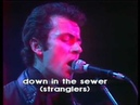 The stranglers live french TV 1979