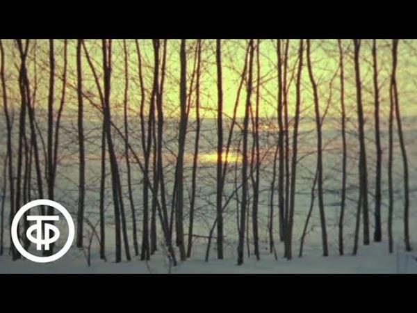 Февраль Из цикла Двенадцать месяцев на музыку русских композиторов 1977
