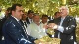 Президенты Беларуси и Таджикистана посетили виноградники и продегустировали урожай.