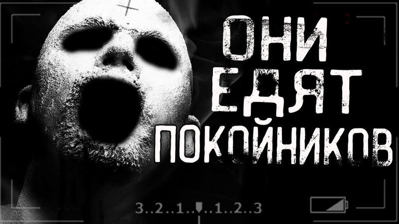 Истории на ночь - ОНИ ЕДЯТ ПОК*ЙНИКОВ...