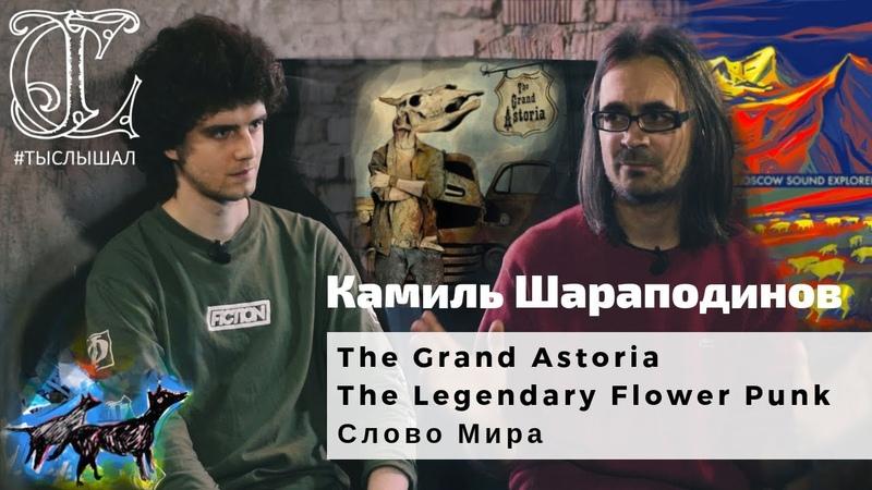 Камиль Шараподинов (The Grand Astoria / The Legendary Flower Punk / Слово Мира) - Большое интервью
