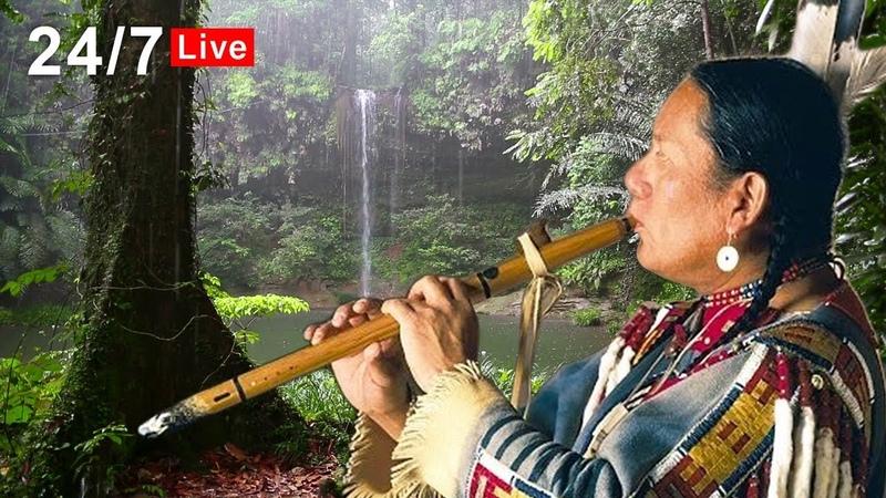 Native American Flute Music and Rain LIVE Relaxing Sleep Meditation Healing Study
