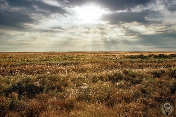 ВОСЕМЬ ЧУДЕС БУМБИН ОЙР Что можно увидеть в Калмыкии за три дня Как минимум 8 чудес! Заповедный УАЗик-«буханка» резво выскочил за пределы Элисты и, словно необузданный конь, почуявший свободу,