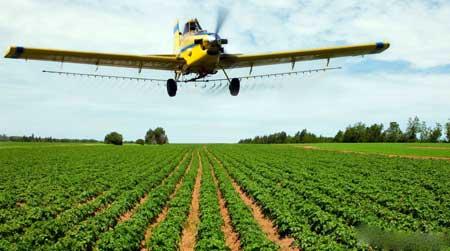 Многие из инсектицидов, используемых в сельском хозяйстве, являются нейротоксинами.