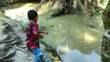 Best Fishing Video Kids Fishing By Daily Village Life (Part-20)