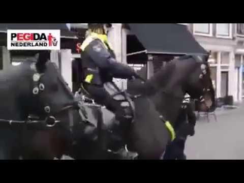 Holland: Frau wird verhaftet und von Kind getrennt, weil sie Gelbweste trägt!
