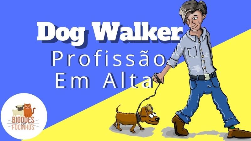 Dog Walker ou Passeador de Cães - Conheça essa Profissão em Alta