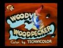 Woody Woodpecker Вуди Вудпекер смех.mp4
