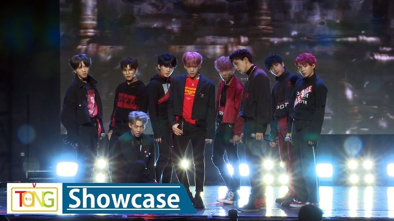 D-CRUNCH(디크런치) STEALER Showcase Stage (스틸러, M1112 4colors)