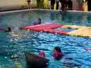 Wakzwemmen esmeralda 1