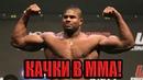 Бодибилдеры в MMA