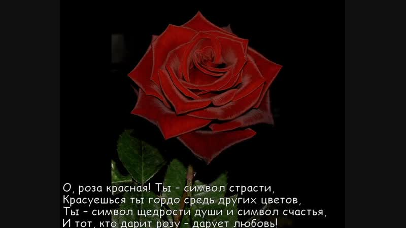 Безумно красивая мелодия любви и о любви