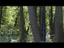 Белки играют в догонялки в Московском парке